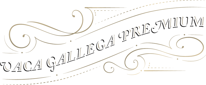 vaca-gallega-premium